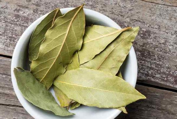 Bay Leaf Substitute